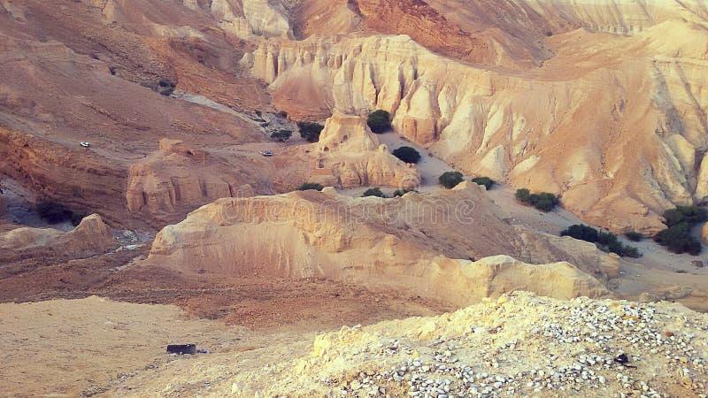 След в пустыне стоковые фотографии rf