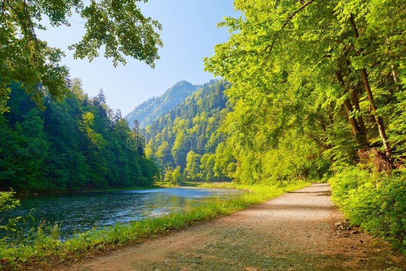 След в ущелье реки Dunajec. Взгляд от Словакии. стоковое изображение rf