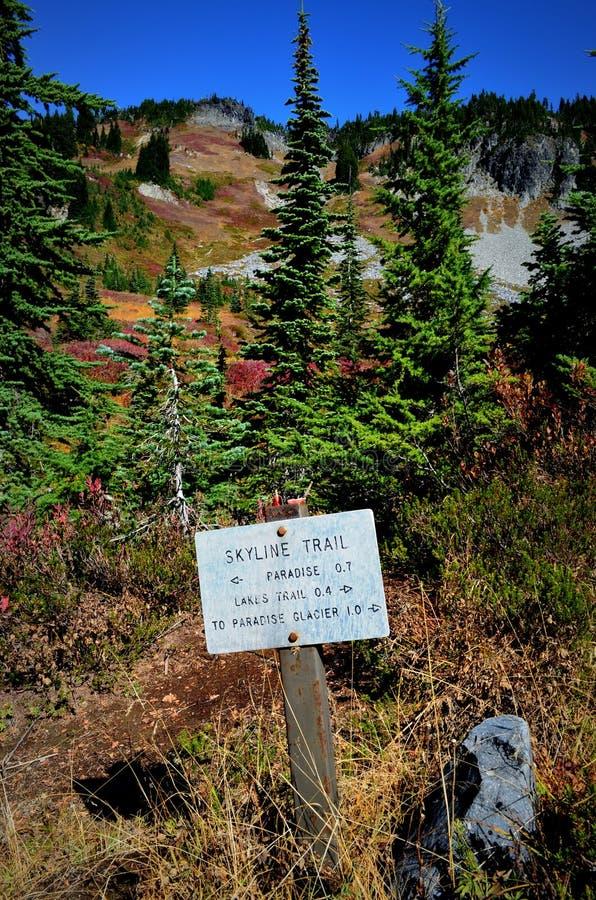 След горизонта в падении, Mt Деревья и трава стоковые фото