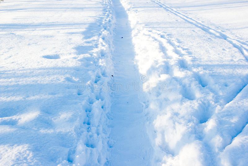 След зимы стоковая фотография