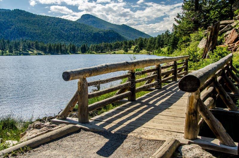 След Колорадо национального парка скалистой горы озера лили стоковые фотографии rf