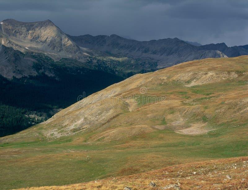 След к Brown& x27; s проходит, коллигативная глушь пиков, национальный лес Сан Изабеллы, Колорадо стоковая фотография rf