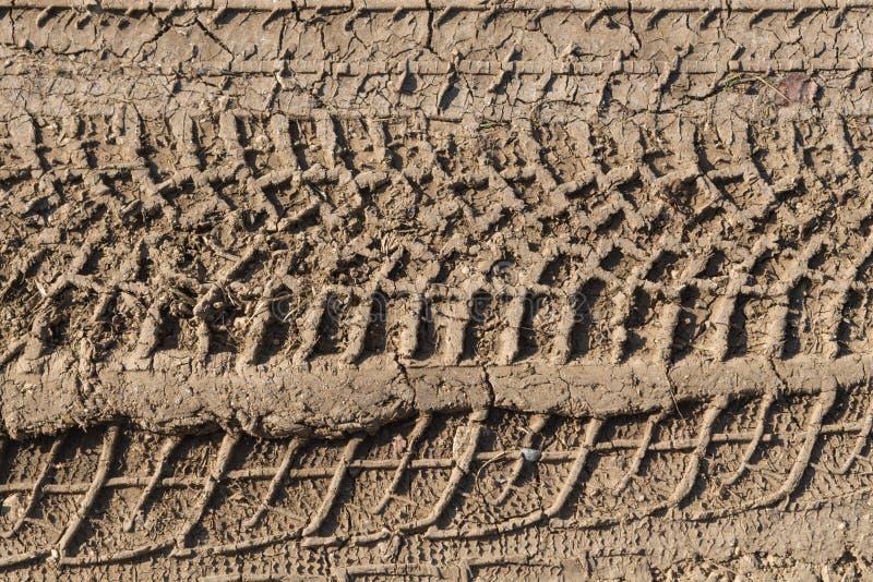 след ноги 4x4 на тинной земле стоковая фотография