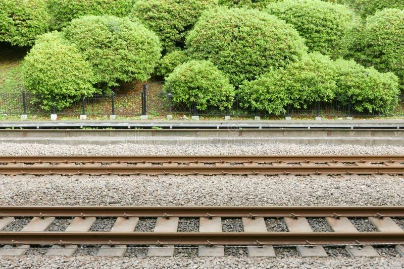 След поезда с зелеными растениями в станции Японии стоковые изображения rf