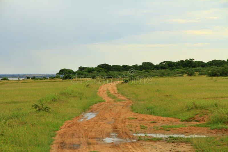 След сафари национального парка Murchison Falls стоковое изображение rf
