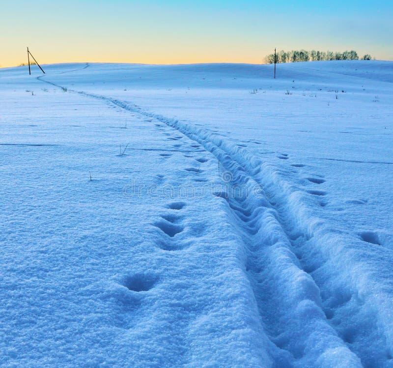 След лыжи на поле снега стоковая фотография