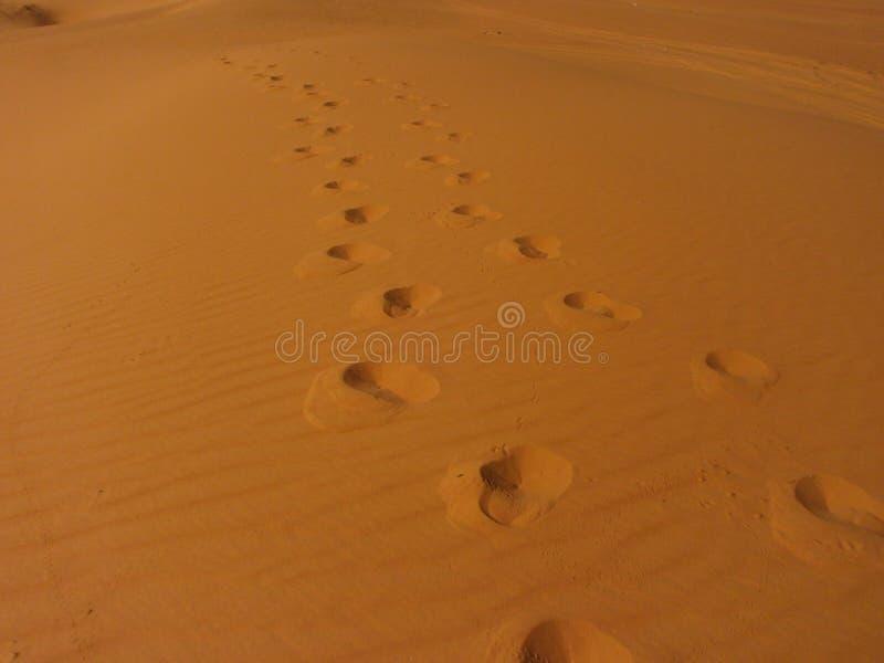 Следы на пустыне стоковое фото
