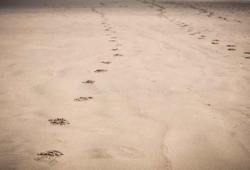 Следы ноги в песке на пляже стоковая фотография rf