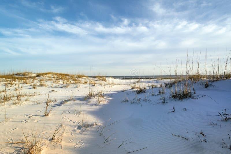 Следы ноги в песчанных дюнах на сумраке стоковые фото