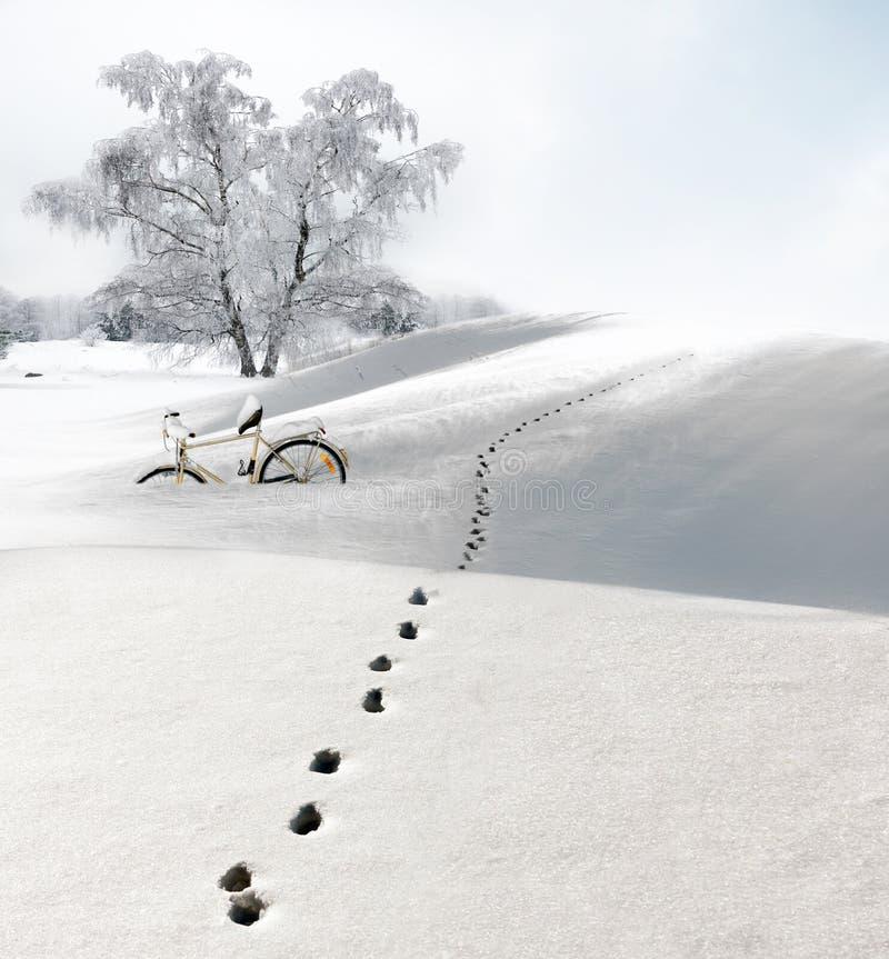 Следы ноги в снежке стоковая фотография