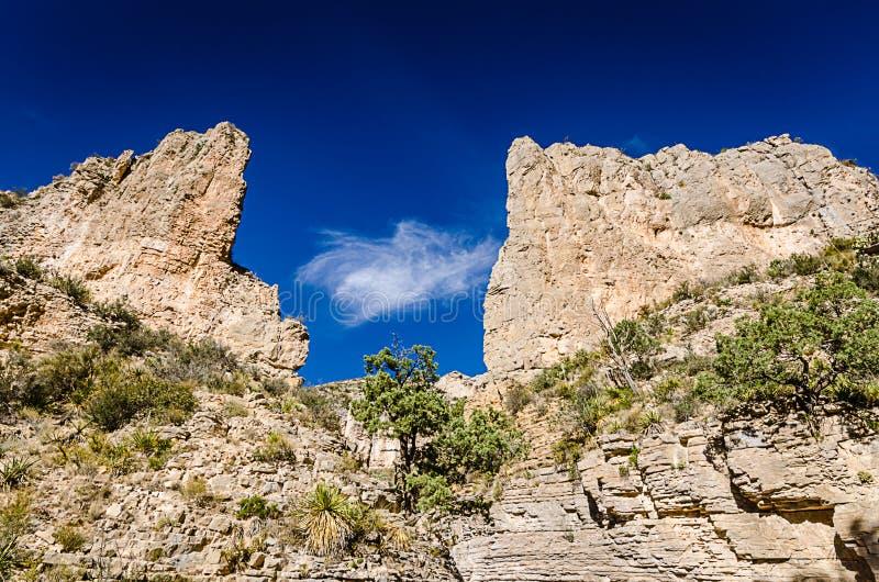 След Hall дьяволов - национальный парк гор Guadalupe - Техас стоковые изображения