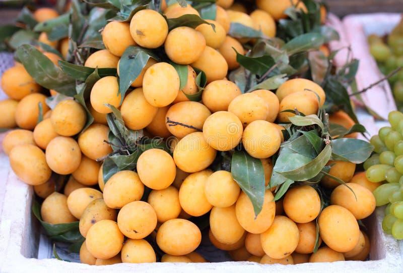 Слива Мэриан Mayongchid Maprang и манго сливы стоковые изображения