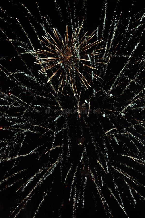 С Новым Годом! фейерверки против темной предпосылки стоковая фотография