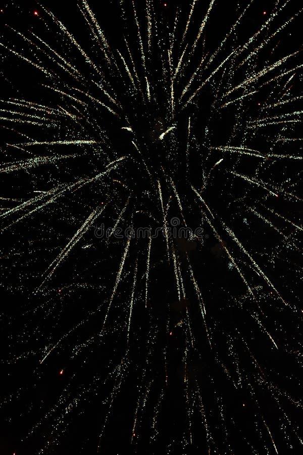 С Новым Годом! фейерверки против темной предпосылки стоковая фотография rf