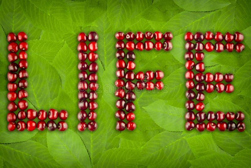 Слово вишен ягод - жизнь стоковое фото