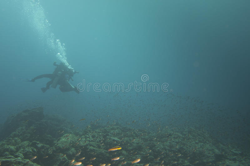 С ограниченными возможностями неработающий водолаз стоковое фото