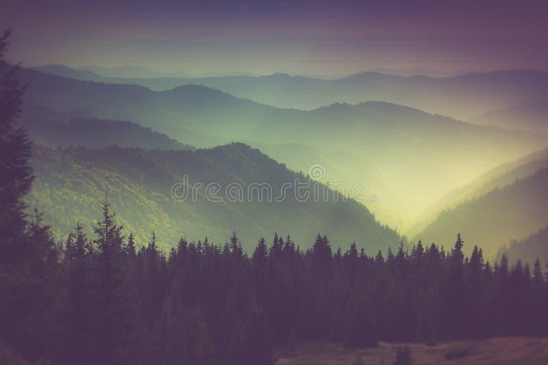 Слои горы и помоха в долинах стоковое фото rf