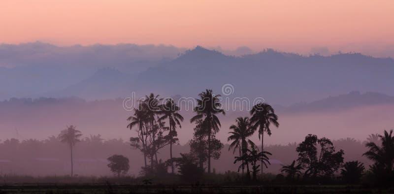 Слои туманных холмов на восходе солнца стоковые фотографии rf