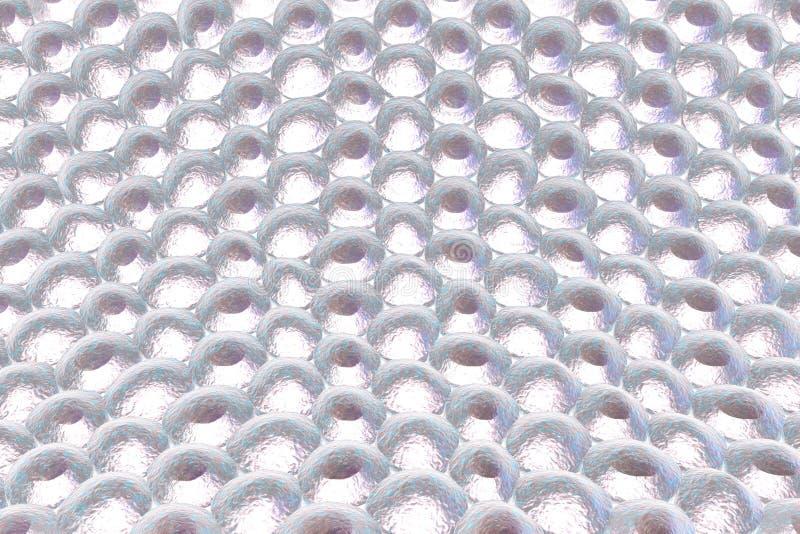 Слой клеток человека иллюстрация вектора
