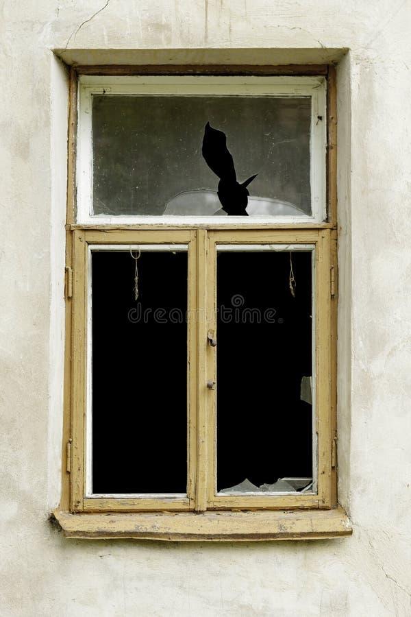 сломленное окно стоковые фотографии rf