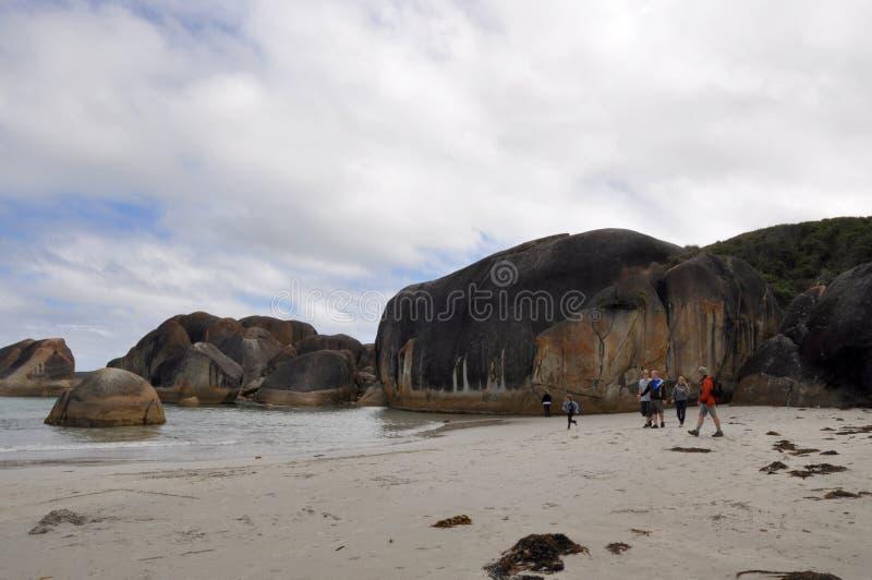 Слоновые породы и туристы стоковое изображение rf