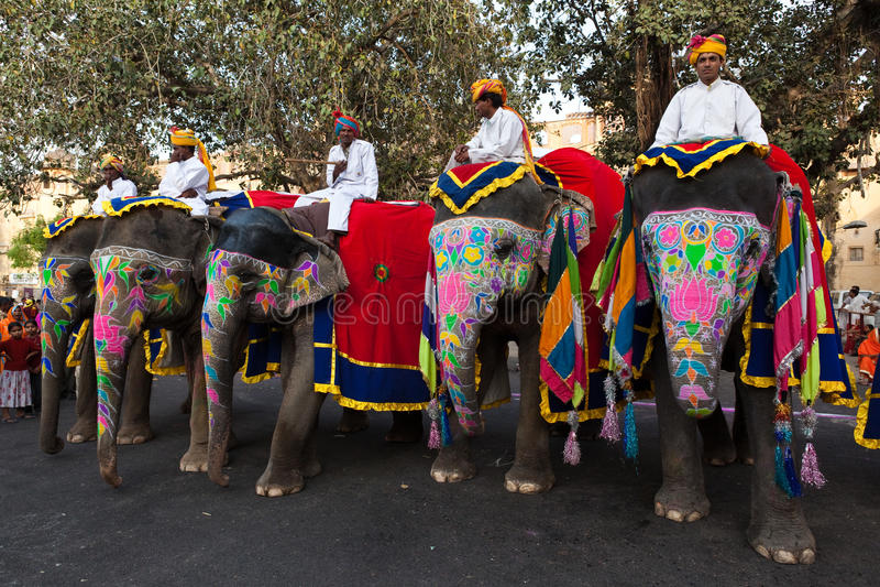 Слоны людей Gangaur Фестивал-Джайпура ехать стоковое фото