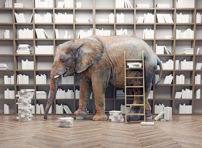 Слон в библиотеке иллюстрация штока