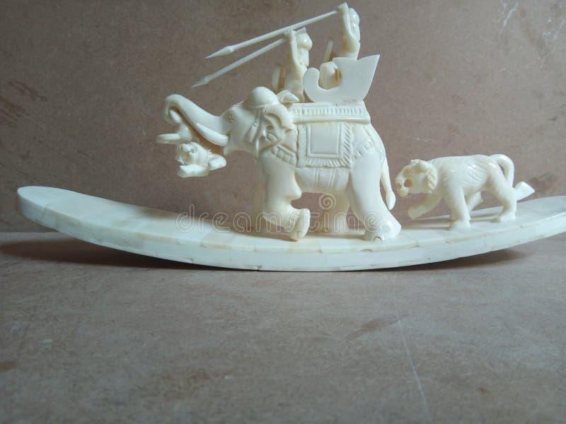 Слон и тигр косточки звероловства стоковые фотографии rf