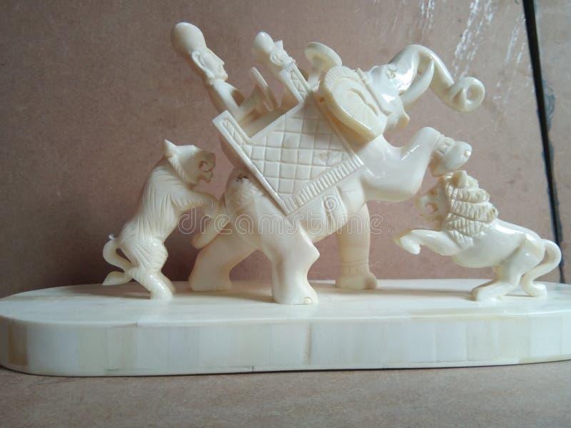 Слон и тигр косточки звероловства стоковые изображения rf