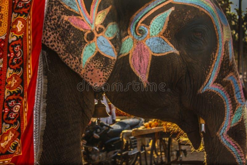Слон на улице Индии стоковое изображение rf