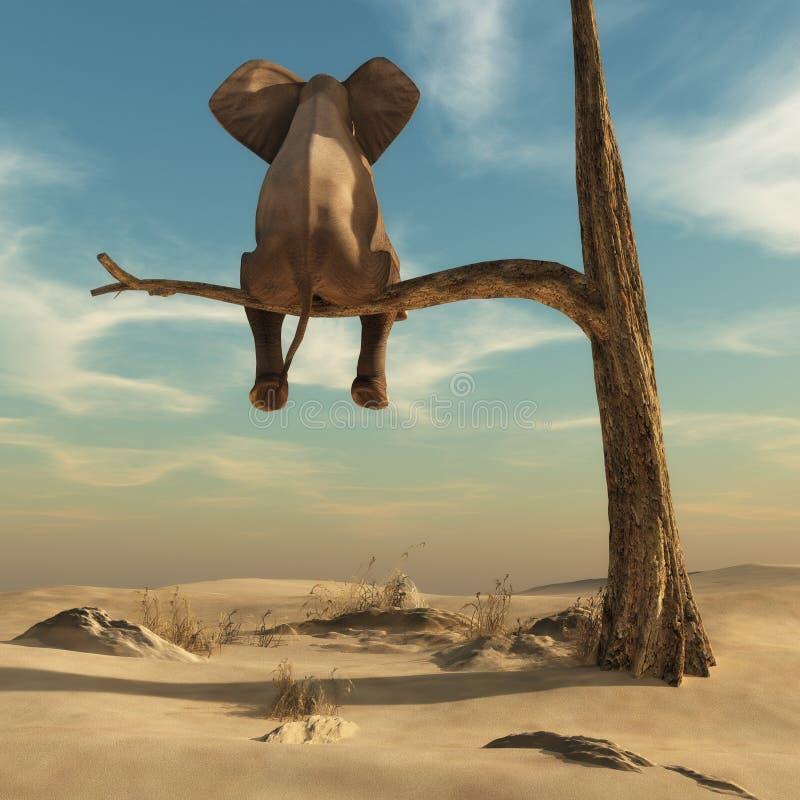 Слон сидя на тонкой ветви вянуть дерева стоковые изображения