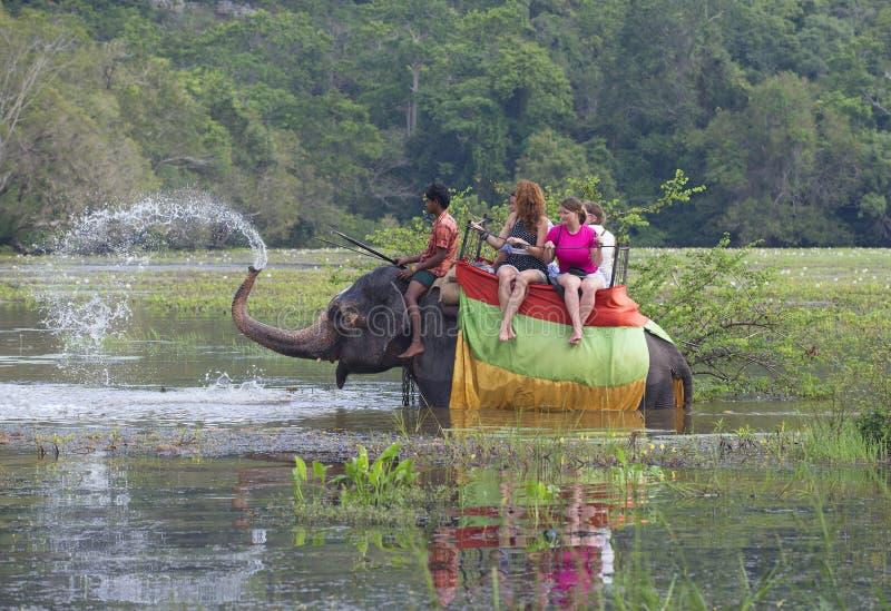 Download Слон с группой в составе туристы позволил фонтану хобота на Overgrown пруде Sri Lanka Редакционное Фото - изображение насчитывающей пуща, озеро: 81812666