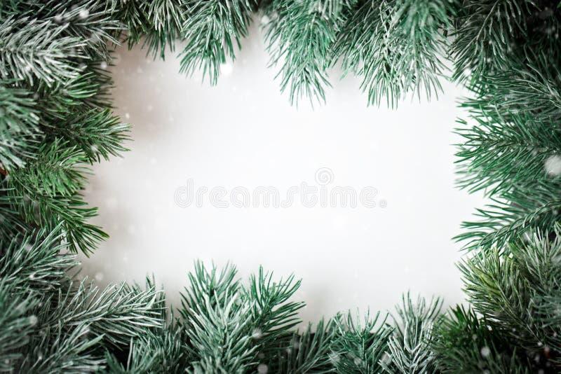 С Рождеством Христовым и с новым годом Рамка ветвей ели на белой предпосылке Селективный фокус Рождество стоковое фото
