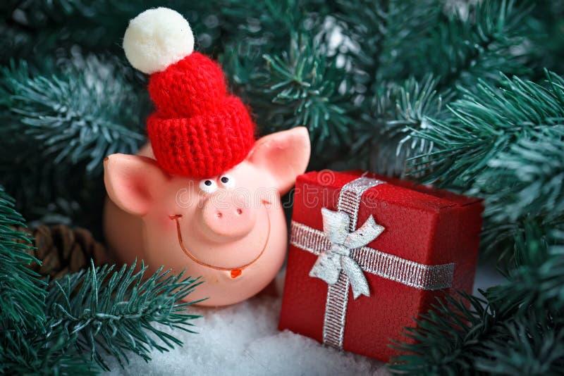 С Рождеством Христовым и с новым годом Свинья игрушки в ветвях спруса Предпосылка с космосом экземпляра Селективный фокус стоковая фотография rf