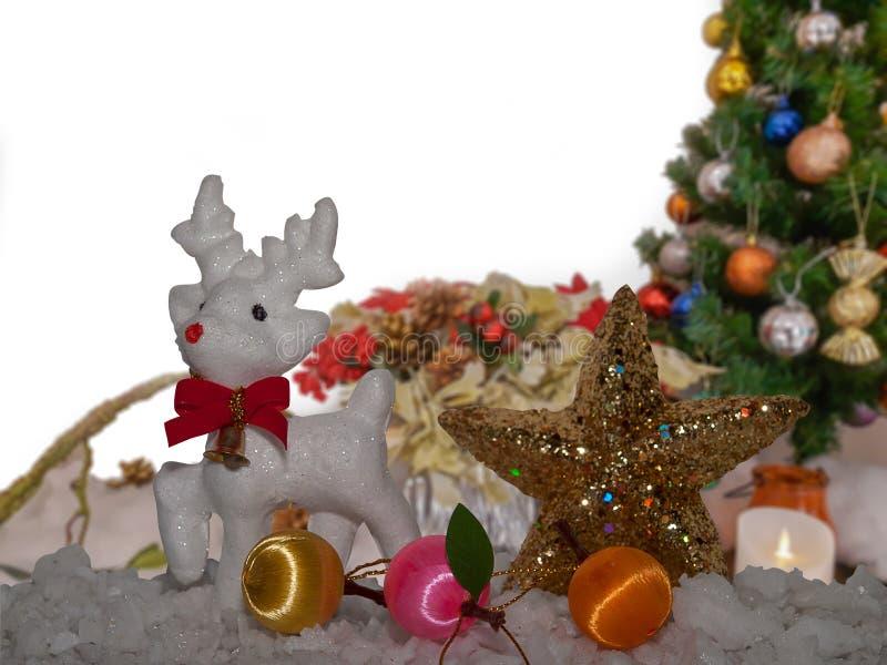 С Рождеством Христовым, северный олень стоковые фото