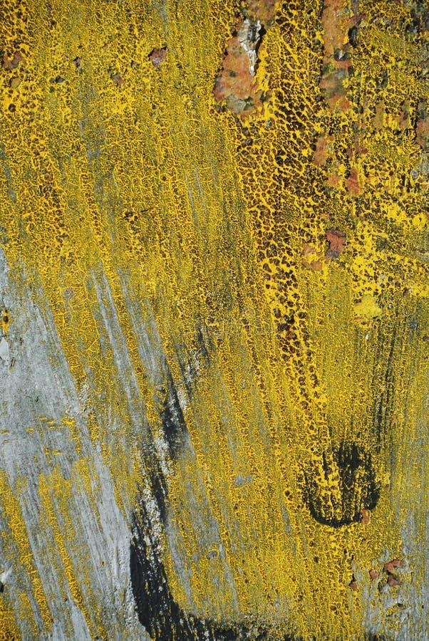 Случайный коллаж или покрашенная текстура предпосылки стены стоковое изображение rf