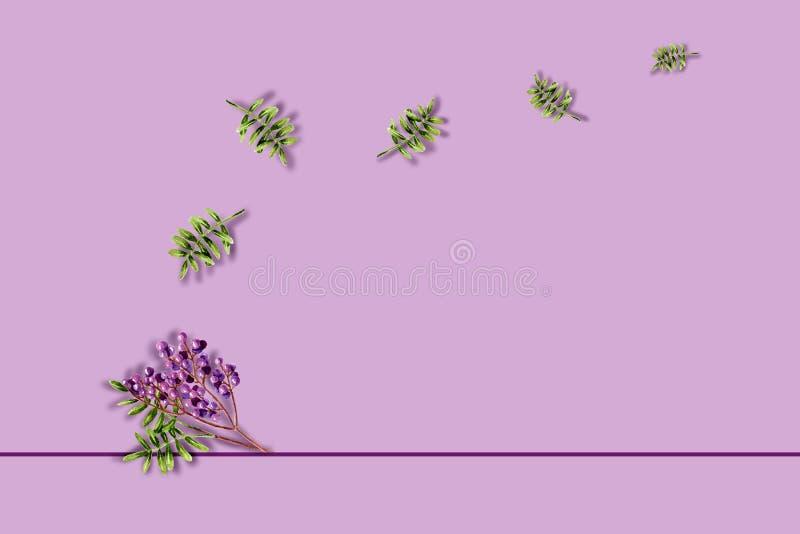 ? com espinhaço verde de cor aquosa e bagas roxas Modelo com plantas pintadas à mão ilustração royalty free