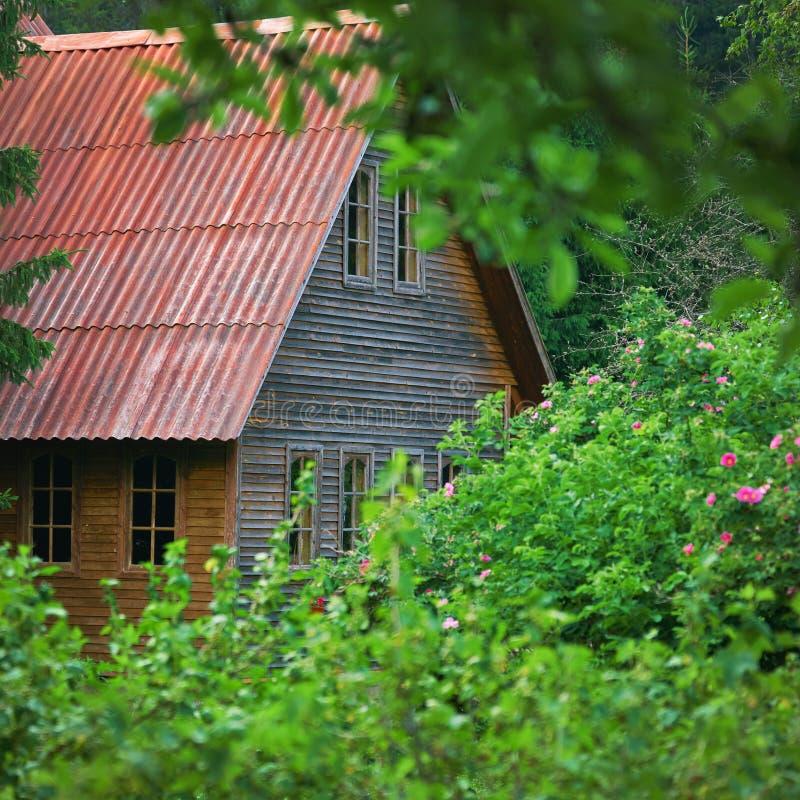 ?ountry-Haus mit einem roten Dach begraben im Laub von Bäumen im Sommer stockfoto