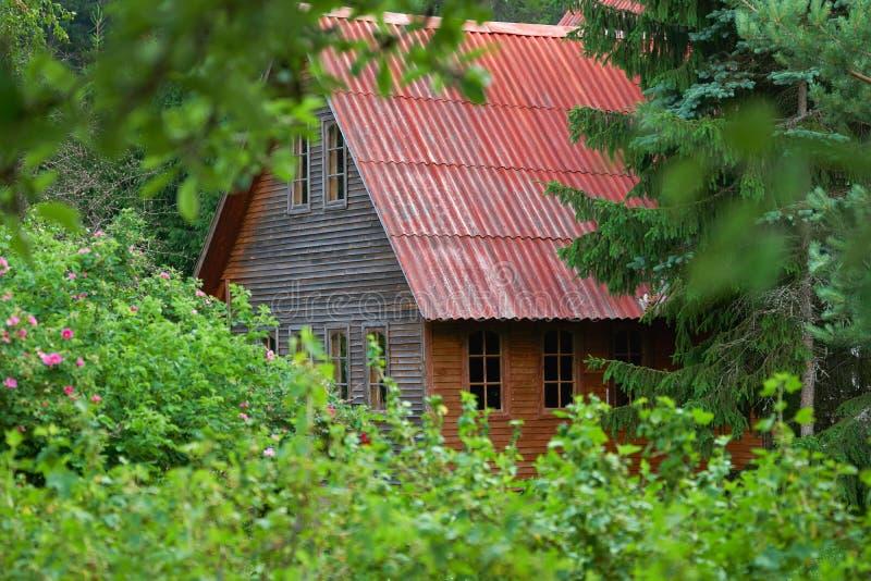 ?ountry-Haus mit einem roten Dach begraben im Laub von Bäumen im Sommer stockbild