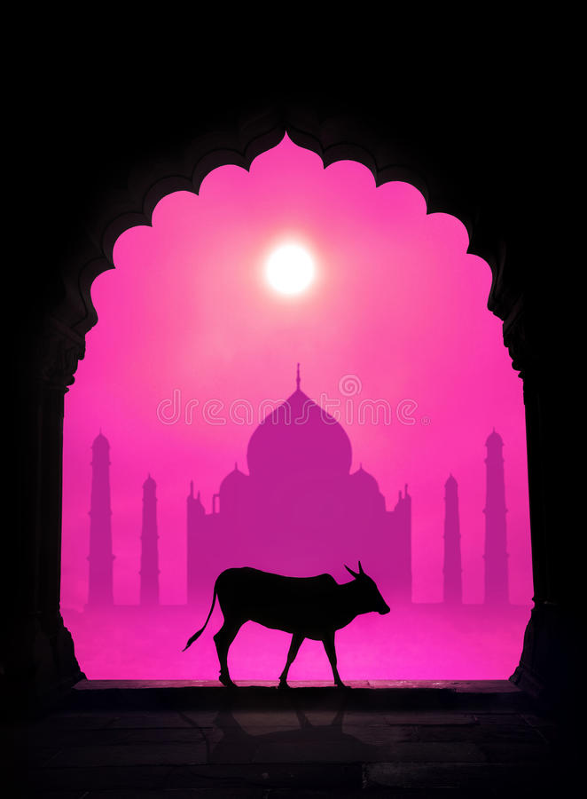 ?owsilhouet en Taj Mahal stock afbeelding