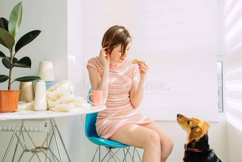 ?raftswoman che si rilassa con la tazza di caffè, mangiando biscotto, parlando con un cane, tricottante nel posto di lavoro accog fotografia stock