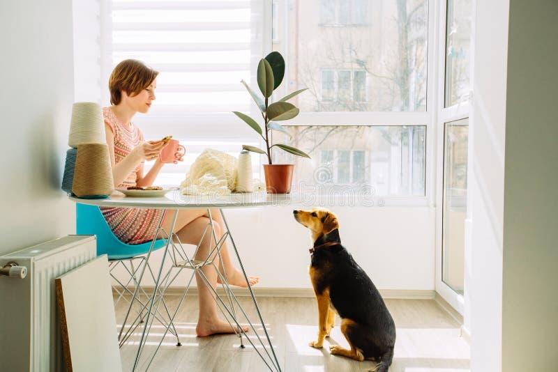 Сraftswoman som kopplar av med kaffekoppen och talar med en hund, medan sticka klänningen i hemmastadd inre för hemtrevlig arbets royaltyfria foton