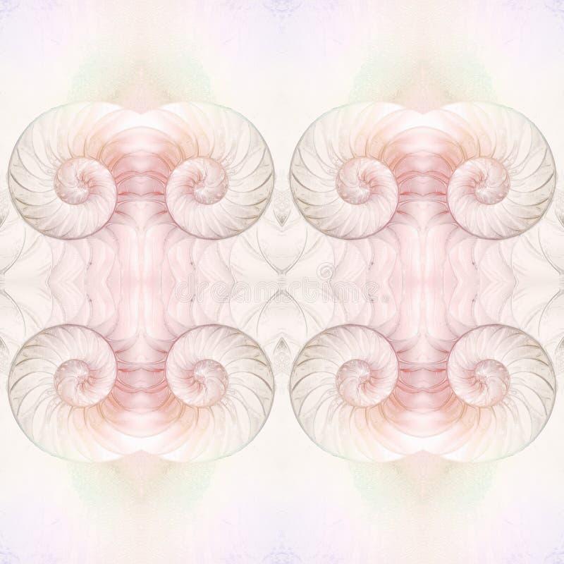 Сut烟囱鹦鹉壳,真珠色的壳,普遍的头足纲动物 皇族释放例证