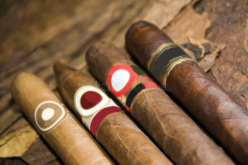 табак руки сигар свернутый Никарагуаом стоковые изображения