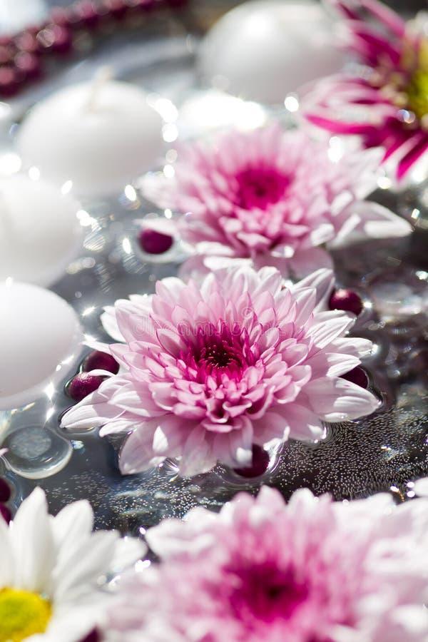 таблица съемки макроса цветка украшений стоковая фотография