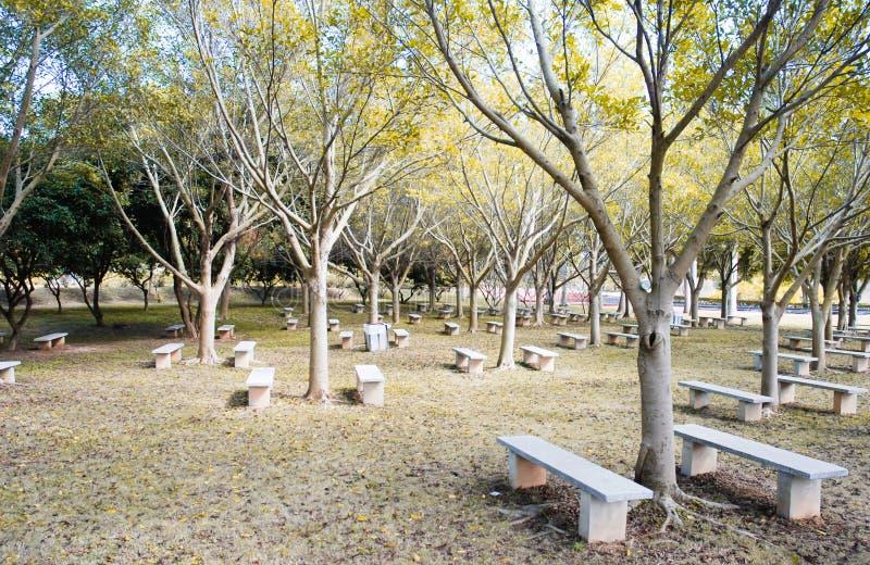 Табуретка парка каменная стоковые изображения