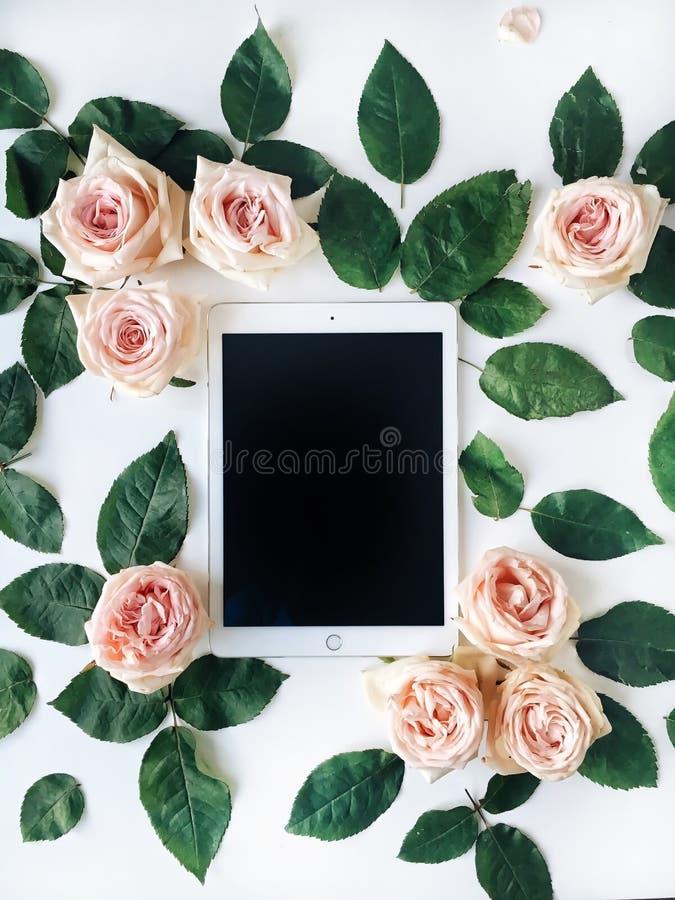 Таблетка и роза пинка цветут с зелеными листьями на белой предпосылке стоковые фотографии rf