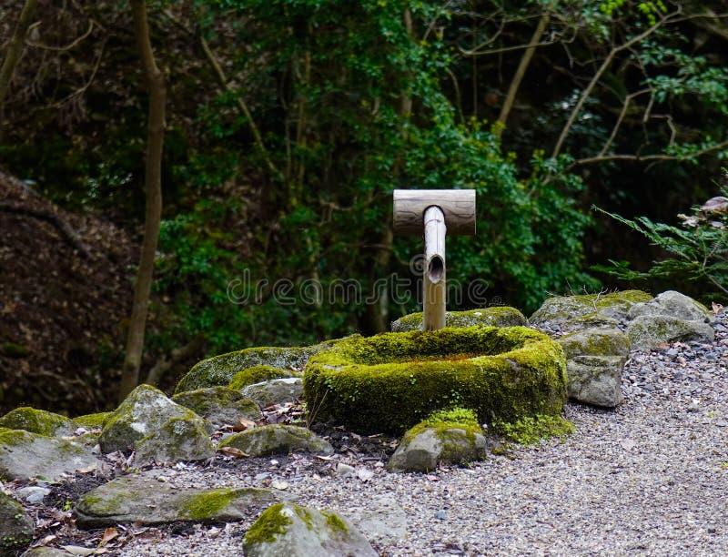 Таз мытья tsukubai на традиционном саде стоковая фотография rf