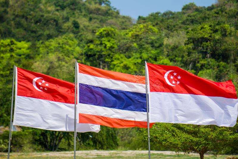 Таиланд и Сингапур сигнализируют надутое на флагштоке с forrest стоковое фото