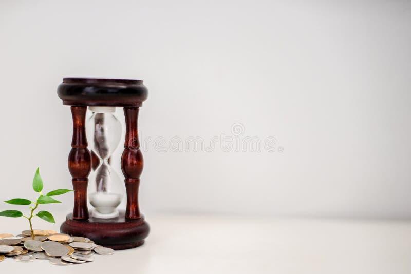 Таймер Sandglass, часов или яйца стоковые фотографии rf